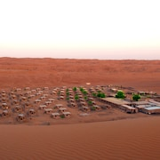 Arabian Oryx Camp