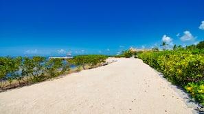 Private beach, sun loungers, fishing