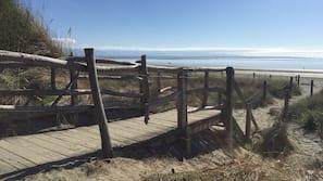 Beach nearby, beach towels, rowing