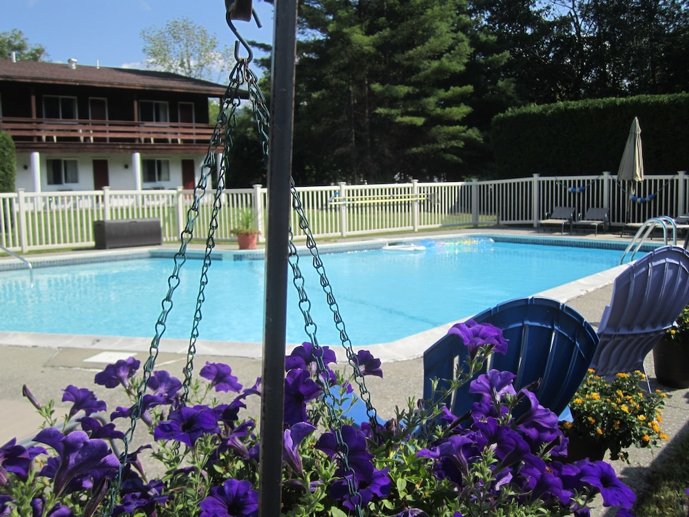 Pool, The Olympia Lodge
