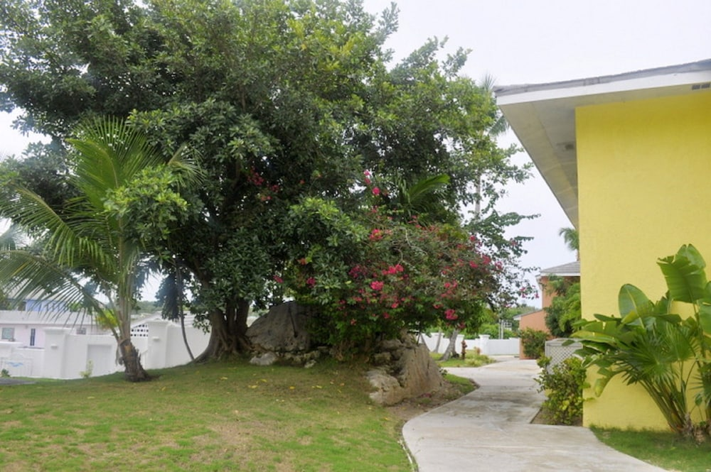 Property Grounds, Abaco Getaway by Living Easy Abaco