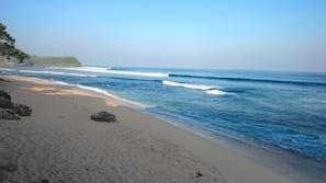 On the beach, beach umbrellas, beach bar, surfing