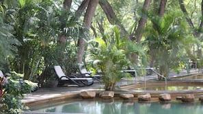 6 utendørsbassenger og bassengparasoller