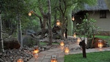 Thornybush Waterside Lodge - Hoedspruit Hotels