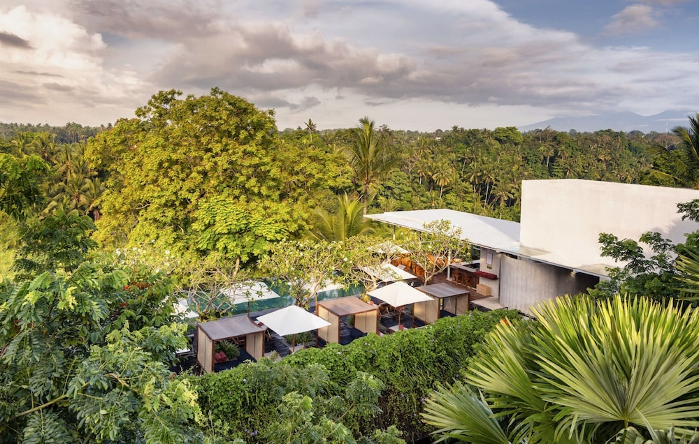 View from Property, Bisma Eight Ubud