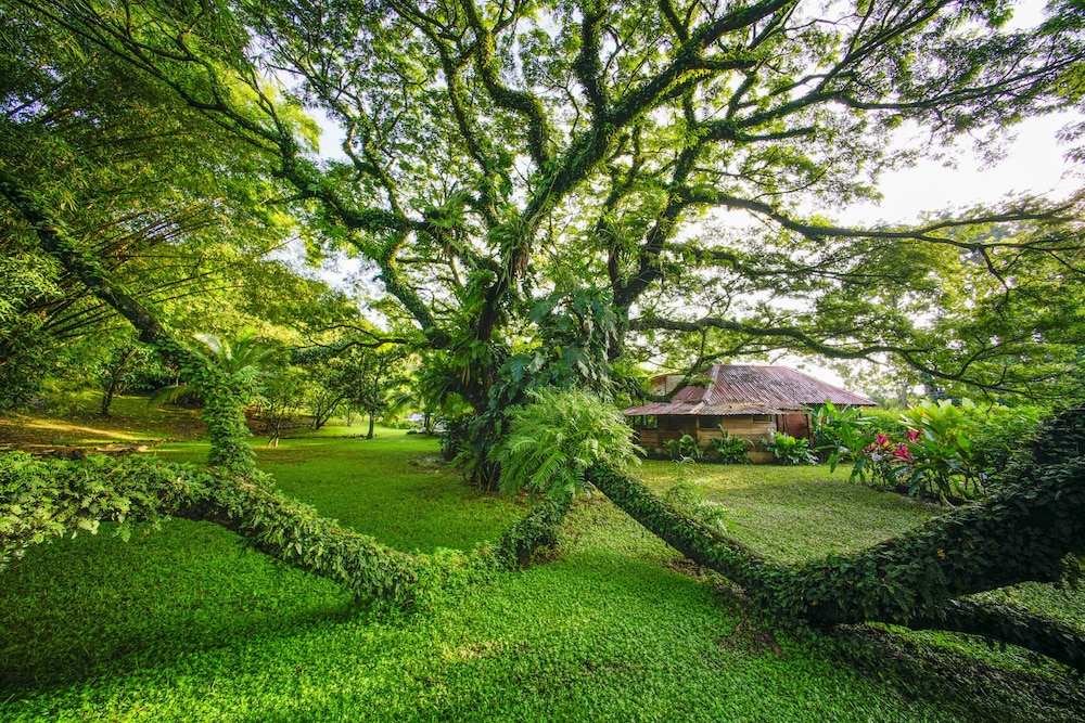 Property Grounds, Ecovital Costa Rica