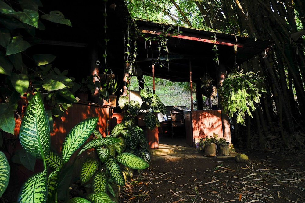 Reception, Ecovital Costa Rica