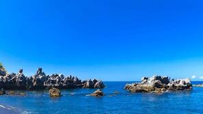Tæt på stranden, snorkling, kajakroning