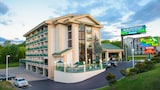 Pigeon River Inn - Pigeon Forge Hotels