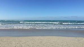 해변에 위치, 백사장, 스쿠버다이빙, 비치 발리볼