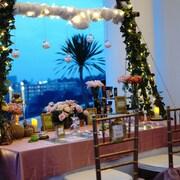 Area Pesta Ulang Tahun