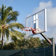 Basketballbane