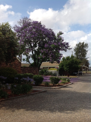 Belvoir Village Motel & Apartments Wodonga
