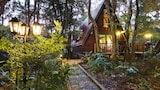The Mouses House Rainforest Retreat - Springbrook Hotels