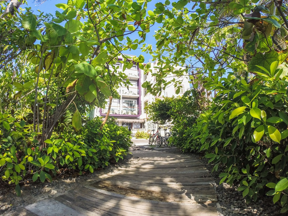 Garden, Hotel Ocean Grand at Hulhumale