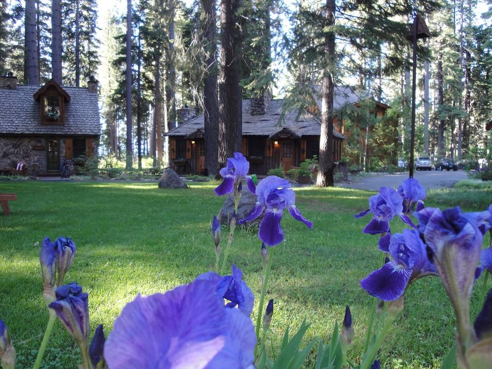 Pleasing The Cottage Inn In Lake Tahoe Hotel Rates Reviews On Orbitz Download Free Architecture Designs Scobabritishbridgeorg