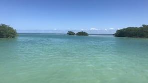 Private beach, white sand, scuba diving, kayaking