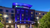 Holiday Inn Express & Suites Anaheim Resort Area - Anaheim Hotels