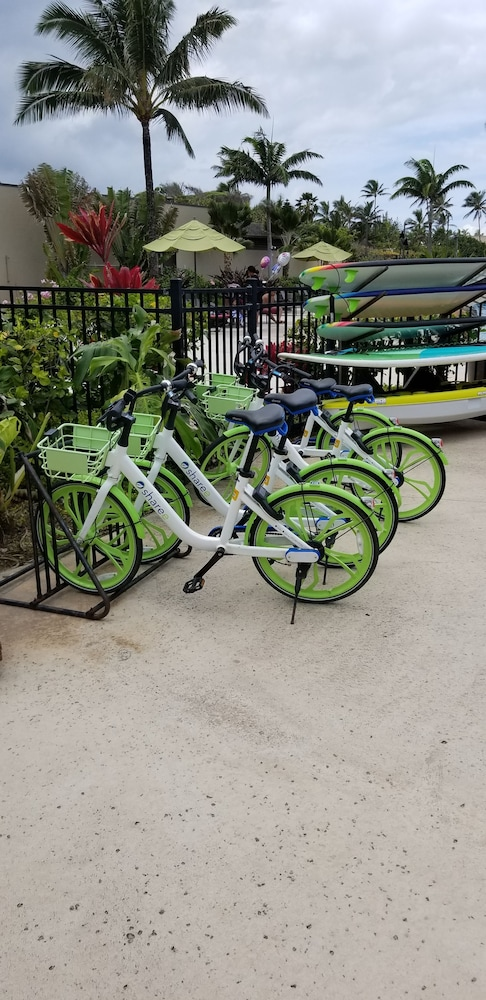 Bicycling, Courtyard by Marriott Oahu North Shore