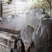 Julkinen kylpylä