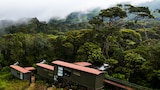 The Rainforest Ecolodge - Deniyaya Hotels