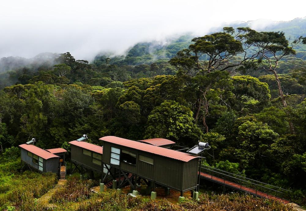 the rainforest ecolodge deniyaya lka. Black Bedroom Furniture Sets. Home Design Ideas