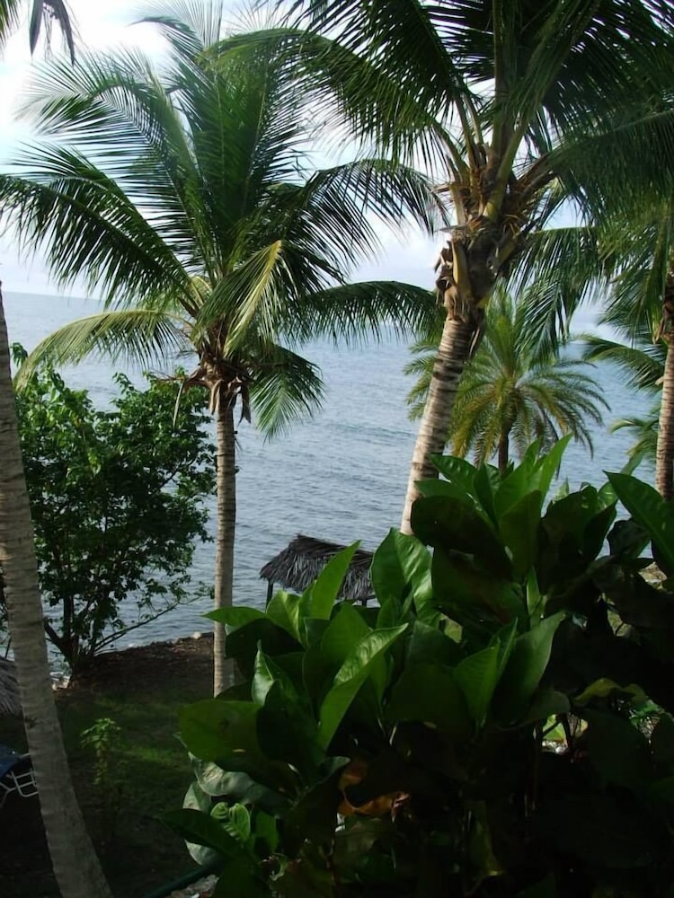 View from Property, Northshore ApartHotel on the beach