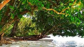 Private beach nearby, white sand, scuba diving