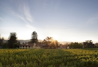 Napa Valley Lodge (1 of 31)
