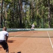 테니스 코트