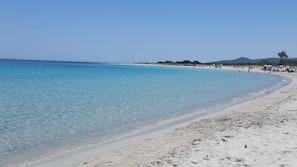 Plage à proximité, sable blanc, chaises longues, parasols