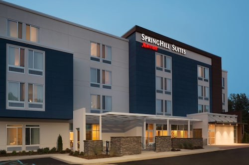 Check Expedia for Availability of SpringHill Suites Tuscaloosa by Marriott