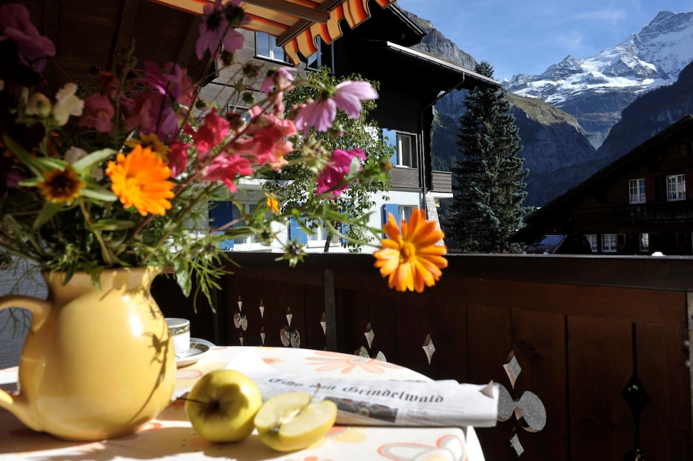 View from Property, Aparthotel Eiger Grindelwald