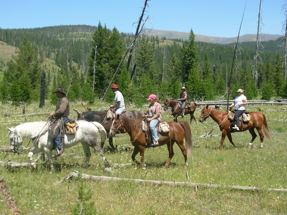 Horse Riding, Bedroll and Breakfast - Campground