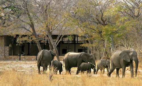 Gwango Elephant Lodge