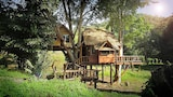 Rabeang Pasak Treehouse Resort - Doi Saket Hotels