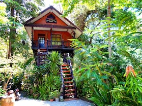 Khao Sok Tree House