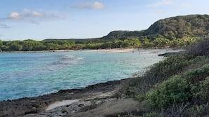 Plage à proximité, plongée sous-marine
