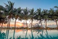 Carillon Miami Wellness Resort (32 of 60)