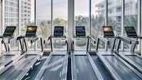 Carillon Miami Wellness Resort (15 of 60)