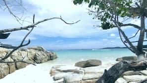 บนชายหาด, ผ้าเช็ดตัวชายหาด