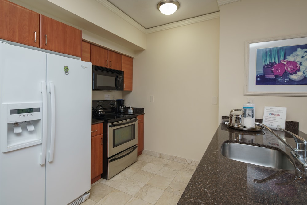 Private Kitchen, Private Ocean Condos at Trump Sunny Isles