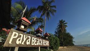 On the beach, white sand, free beach cabanas, scuba diving