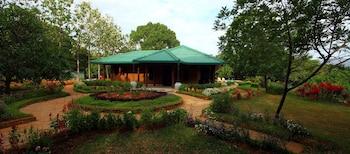 Governor's Gangula