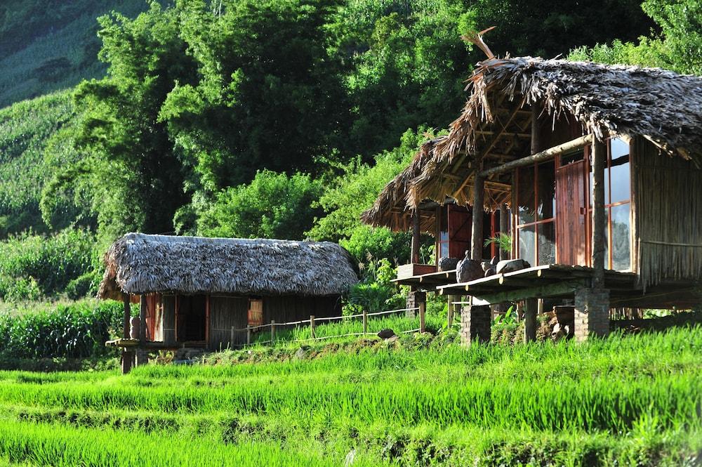 「Eco Palms House」的圖片搜尋結果