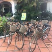 자전거 타기
