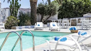 Outdoor pool, open 11 AM to 7 PM, pool umbrellas, pool loungers