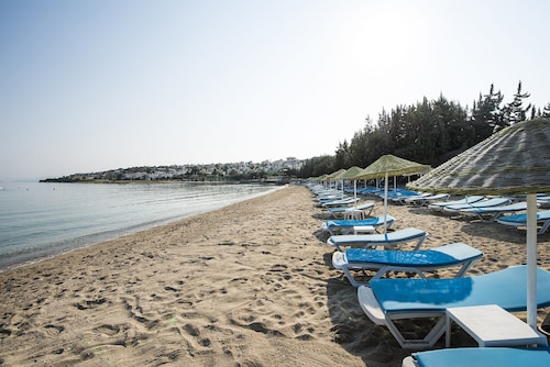 Altin Yunus Apart Beach Plus