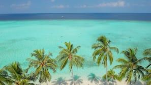 私人海灘、潛水、排球