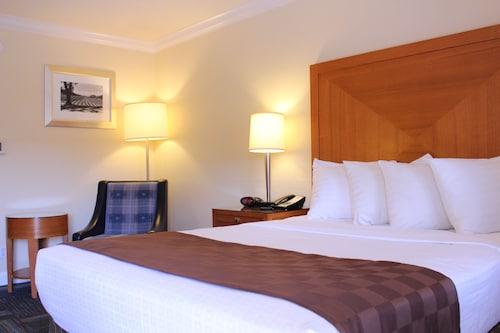 聖路易斯奧比斯保酒店